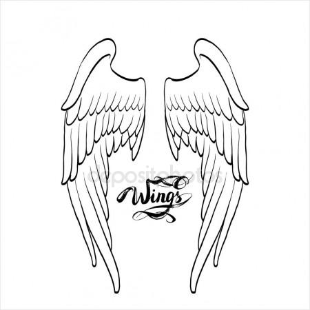 450x450 Angel Wings, Lettering, Drawing Vector Stock Vector Tanshy