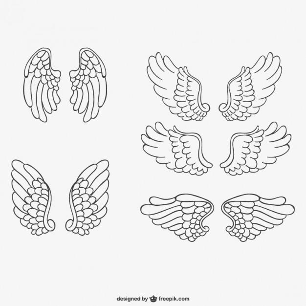 626x626 Angel Wings Vector Free Download