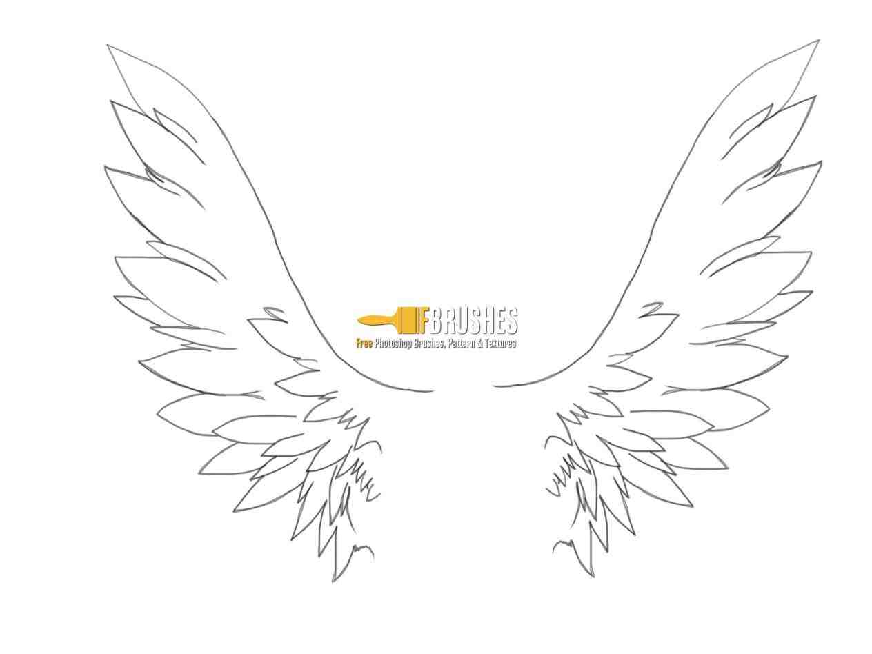 1264x948 Image Result Httpwwwitazcomitazs Ing For How To Draw Angel Wings