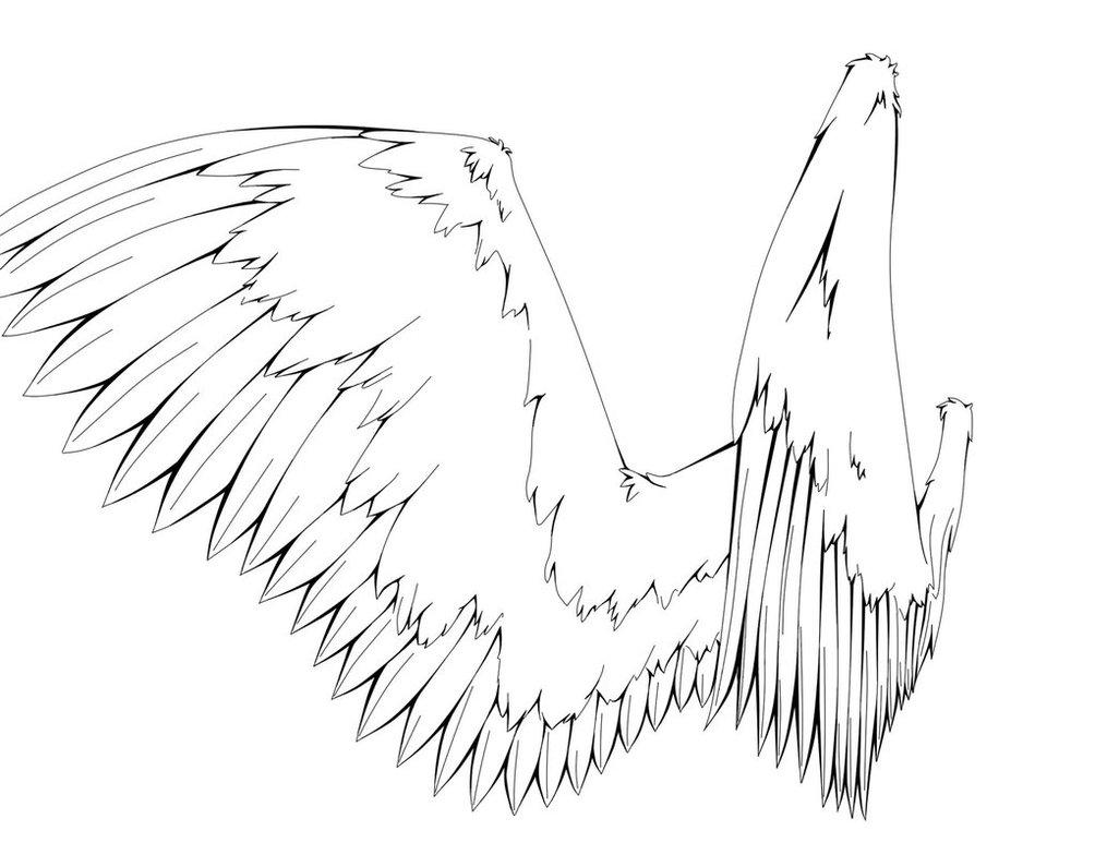 1004x795 Angel Wings Line Art By I7xdead