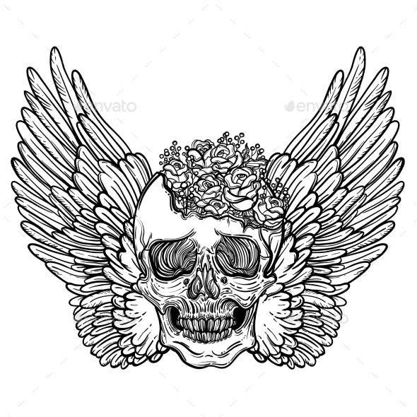 590x590 Line Art Illustration Of Angel Wings With Skull By Vavavka