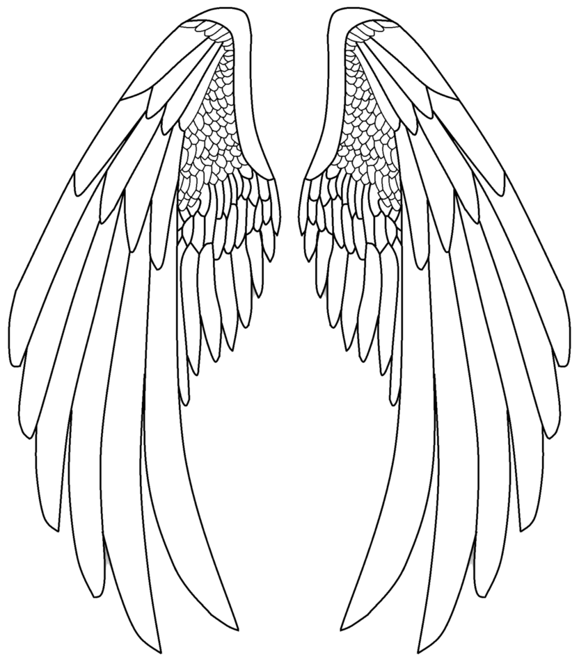 832x961 Pictures Angel Wings Line Drawings,