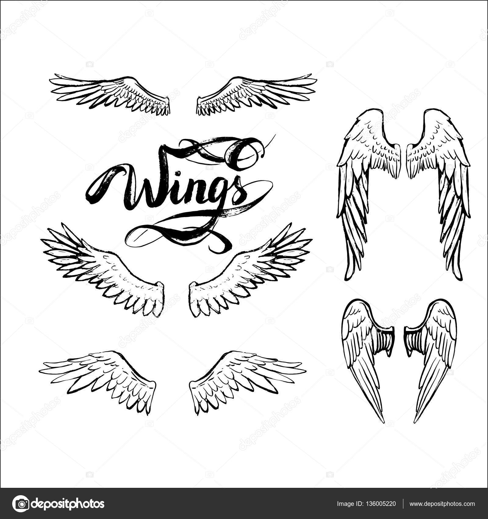 1600x1700 Angel Wings Vector, Lettering, Drawing Stock Vector Tanshy