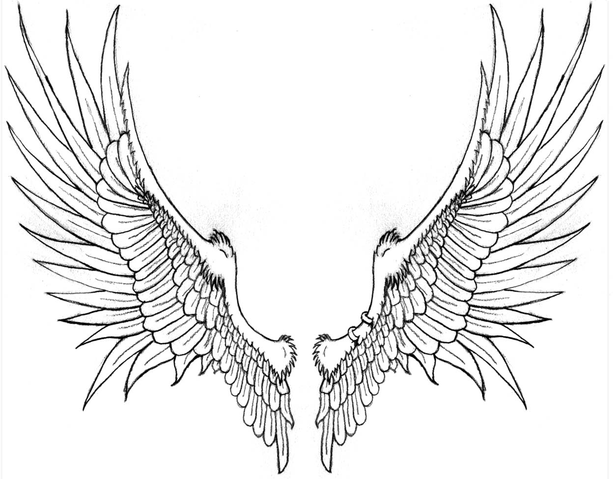 Angel Wings Tattoo Drawing