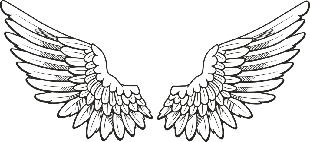 1024x471 Pictures Angel Wings Drawing,
