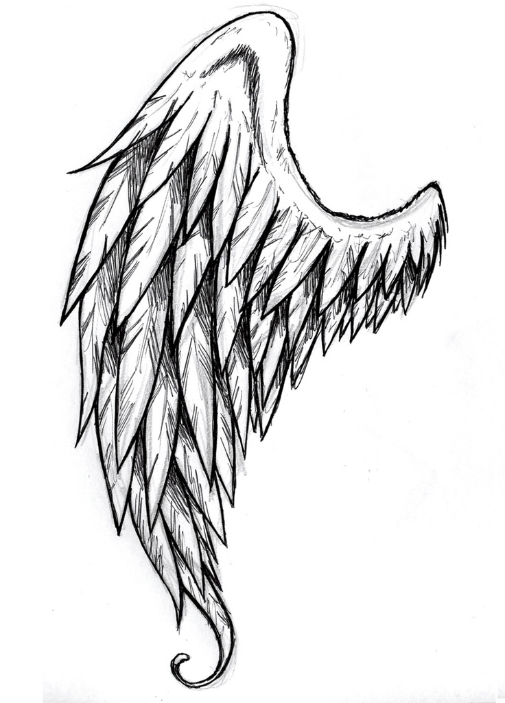 736x1025 How To Draw Wings Angel