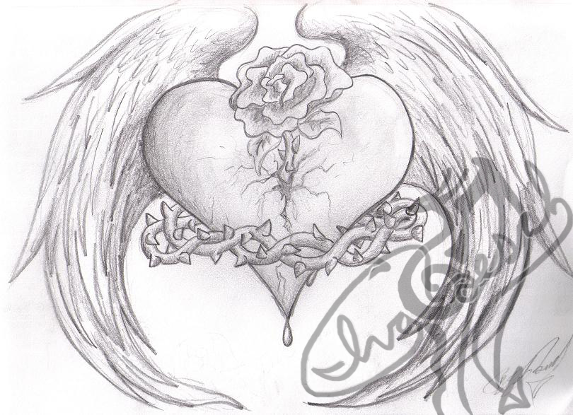 810x587 Wings Of Love Sketch By Ivaicedragoon