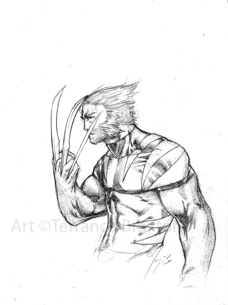 750x1000 Wolverine Sketch by The Angel of Angels on DeviantArt