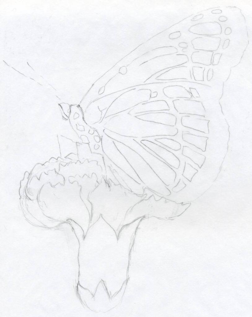 814x1024 Beautiful Angel Cartoon Pensil Sketch 1000 Ideas About Angel