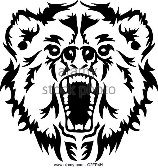 509x540 Angry Brown Bear Black And White Stock Photos Amp Images
