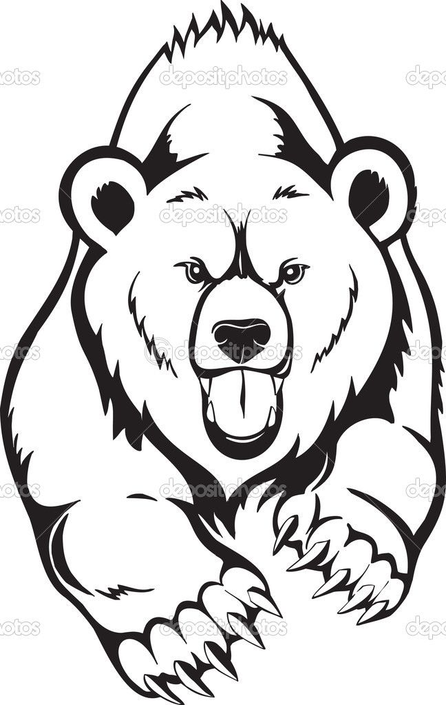 648x1023 Bear Angry Face Tattoo Photo