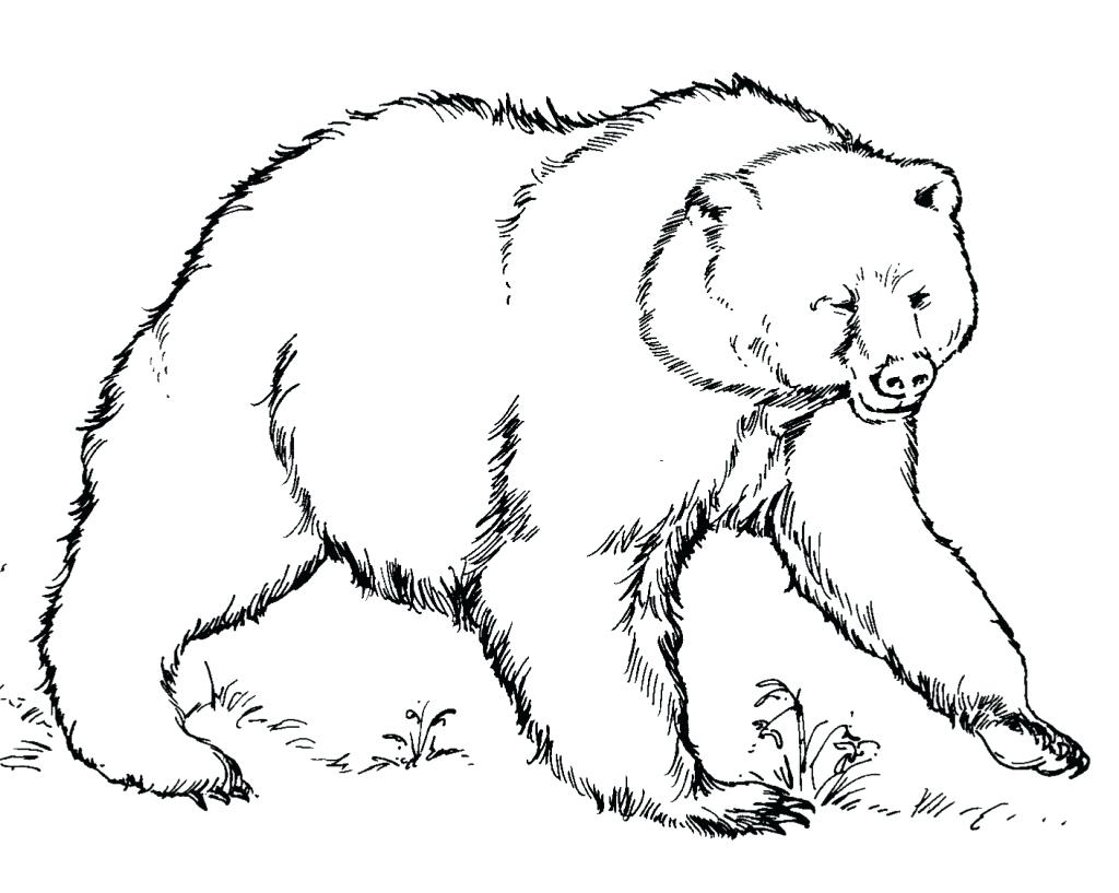 1024x817 Anger Management Coloring Pages Bear Is Angry Page And Forest