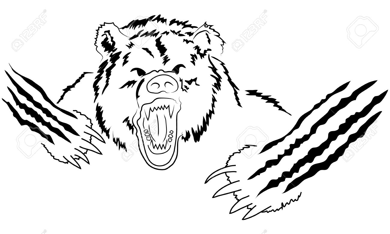 1300x780 Angry Bear Head. Angry Grizzly, Powerful Predator, Strength