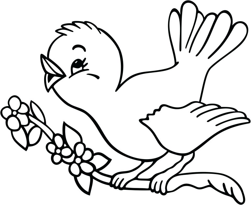 960x783 Free Printable Bird Coloring Pages Medium Size Of Birds Drawing