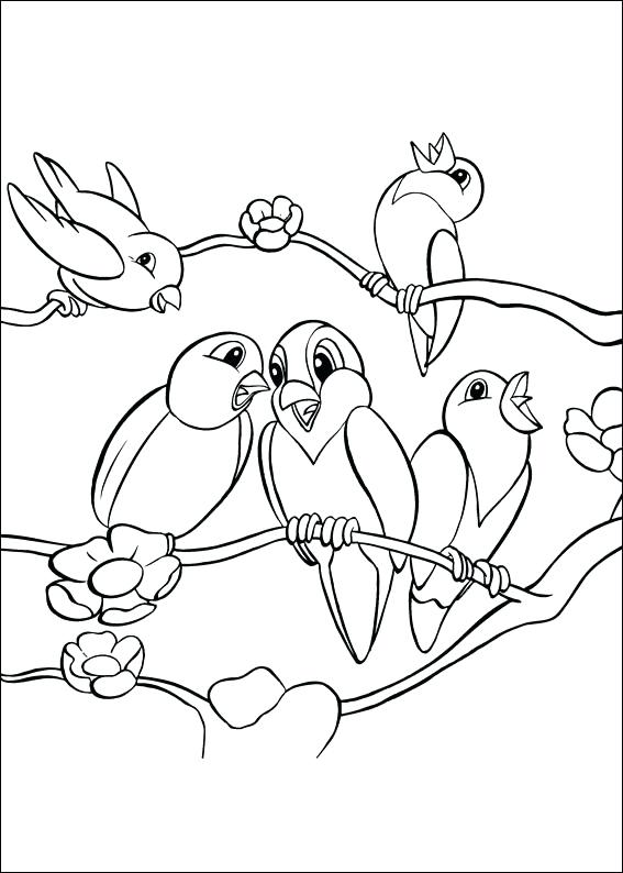 567x794 Coloring Page Of Birds Coloring Page Angry Birds