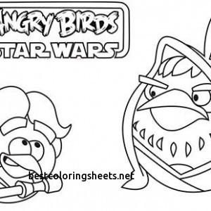 300x300 New Angry Birds Star Wars Luke Skywalker Coloring Pages Best
