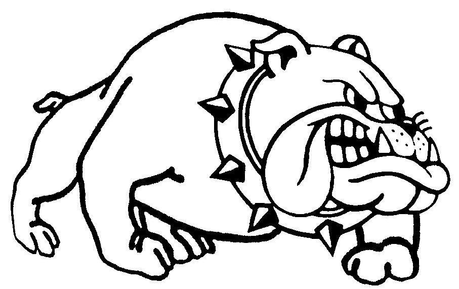 907x571 Drawn Bulldog Mad Dog