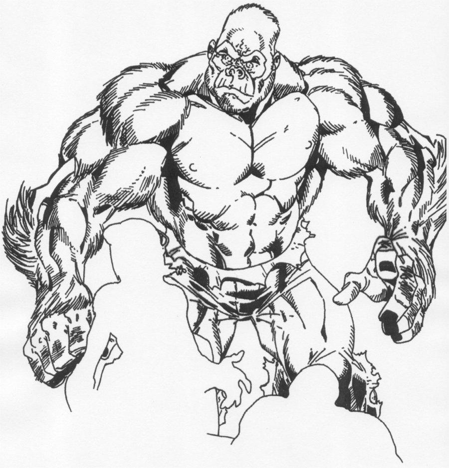 900x938 Gorilla Sketch By Reecekikluvloot