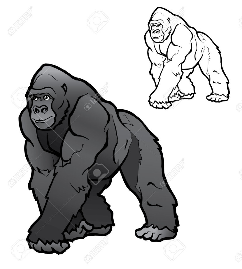 830x923 Top 94 Gorilla Clipart