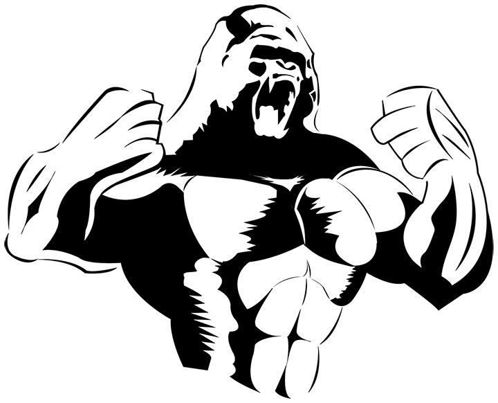 720x582 Gorilla Silhouette