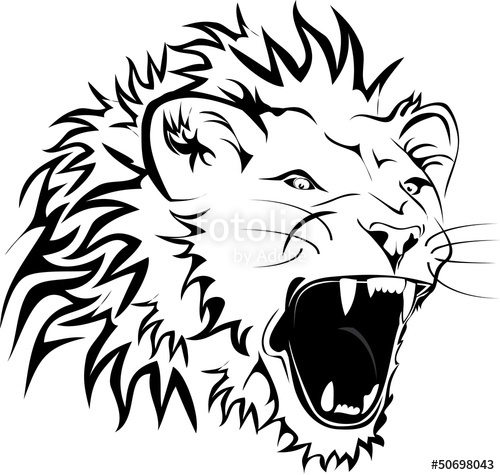 500x475 Angry Lion Stock Image And Royalty Free Vector Files On Fotolia