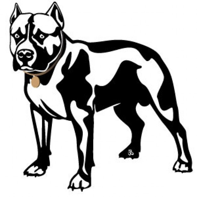 626x626 Clipart Of A Pit Bull