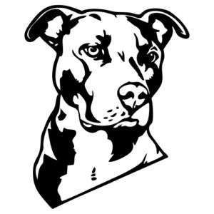 300x300 I Do Love My Pittie! Pitbull Pictures With Sayings Love My