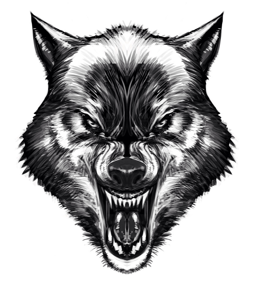 830x960 Pin By Home And Wild On Wolves Wolf, Tattoo And Drawings