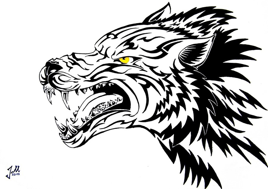 Line Drawing Face Tattoo : Angry wolf face drawing at getdrawings free for personal use