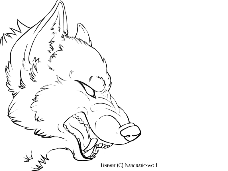 800x600 Angry Wolf Face Outline