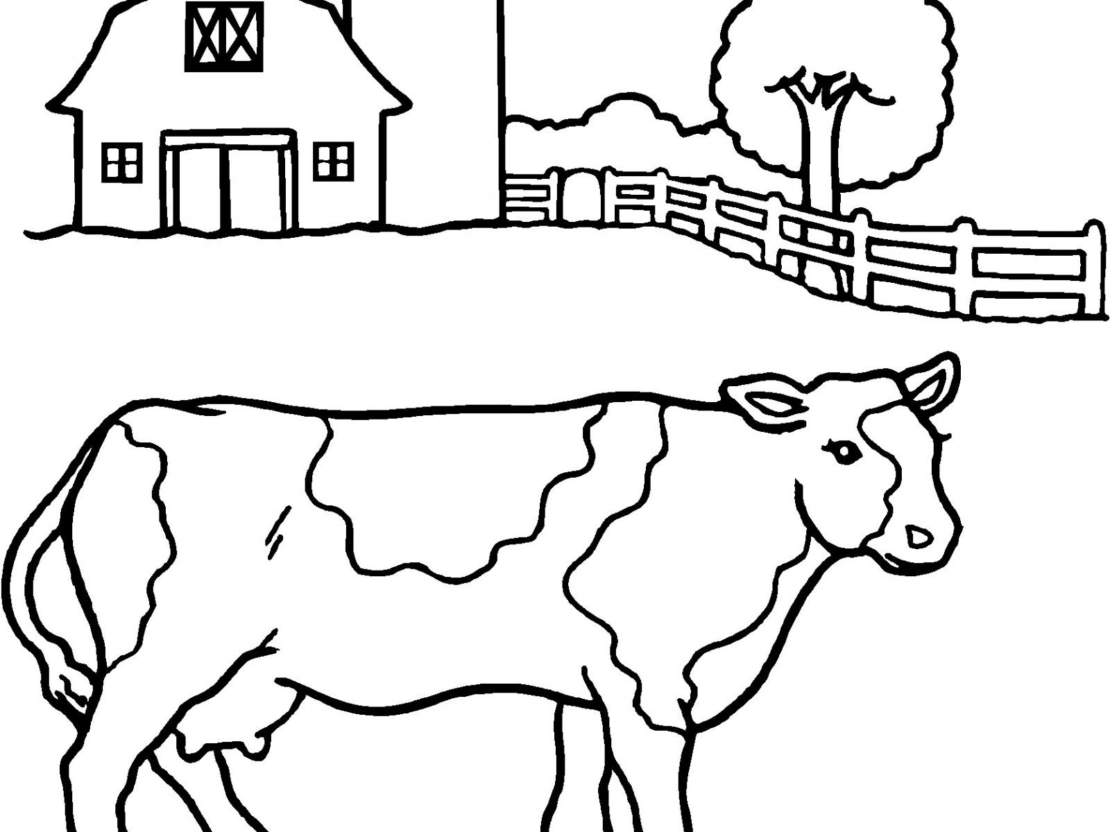 1600x1200 Zebu Animal Coloring Pages Free Draw To Color