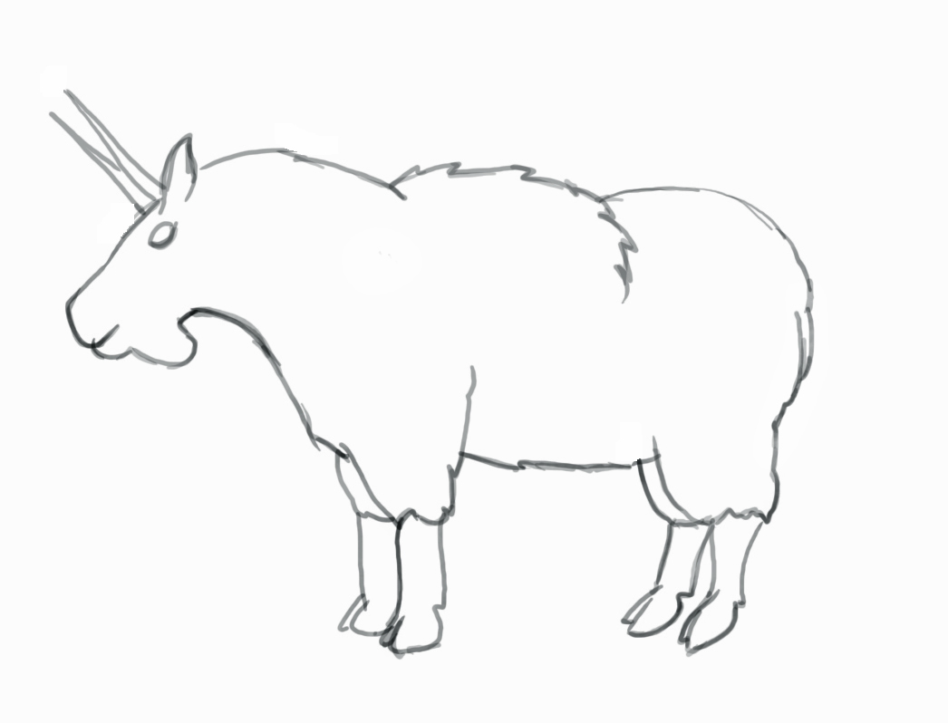 1046x798 How To Draw A Mountain Goat