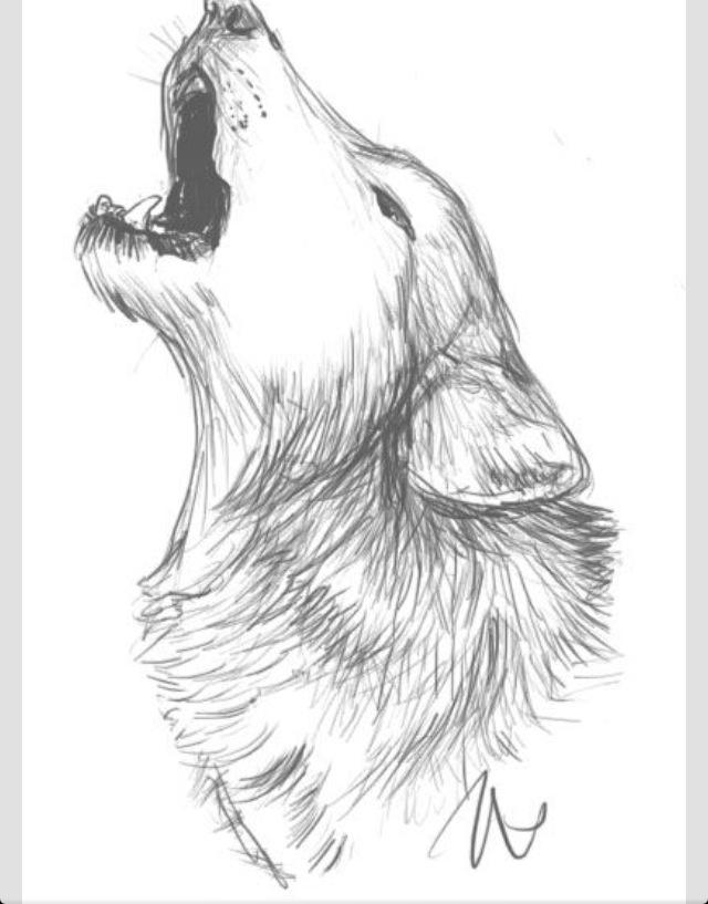 640x817 Wolf Howling Wolf Sketch Wolf Art Art Inspiration