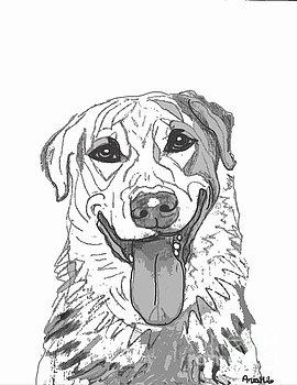 270x350 Ania M Milo Artwork Collection Pet Portrait Drawings Amp Sketches