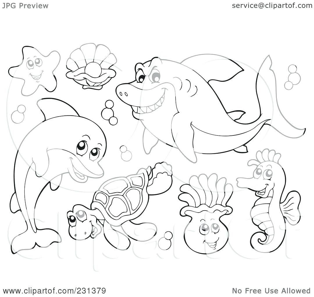 1080x1024 Coloring Collage Coloring Pages Marine Life Water Animal. Collage