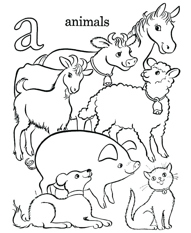 670x820 Animals Coloring Book Plus Coloring Book Pages Animals Coloring