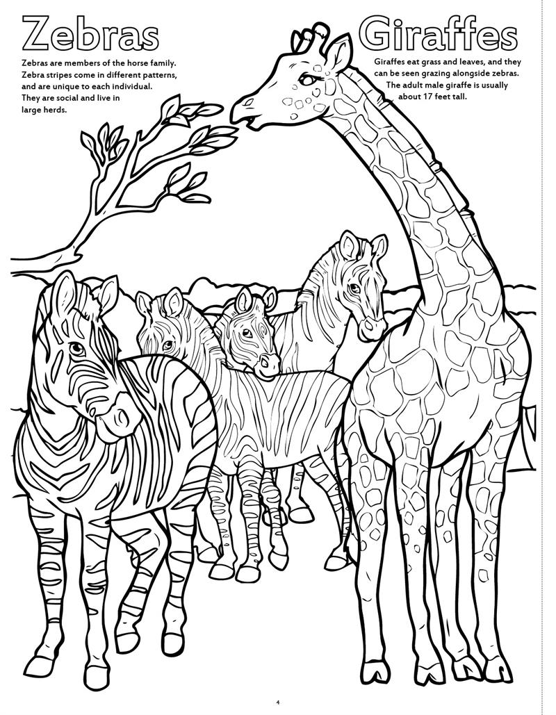 800x1029 Coloring Books Zoo Animals Really Big Coloring Book
