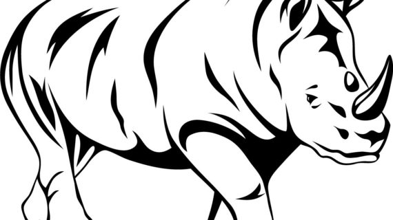 570x320 Outline Drawing Of Animals