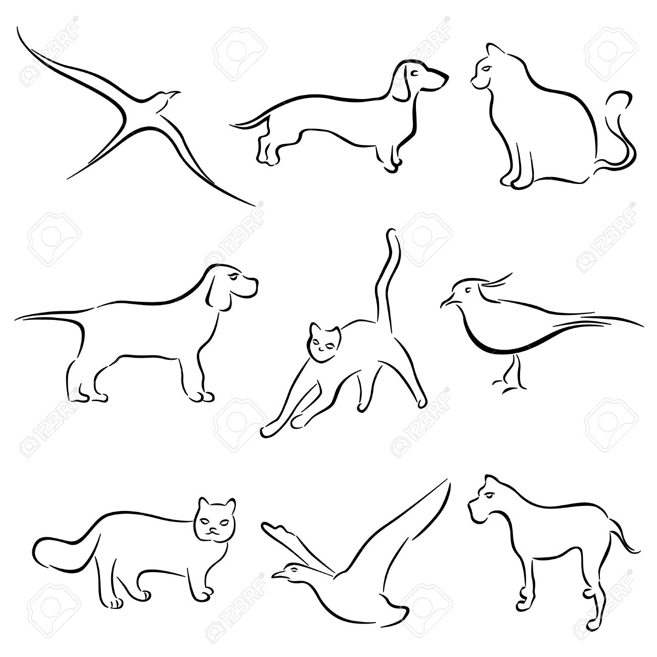 1300x1300 Outline Drawing Of Animals Dog, Cat, Rabbit Animal Drawing Vector
