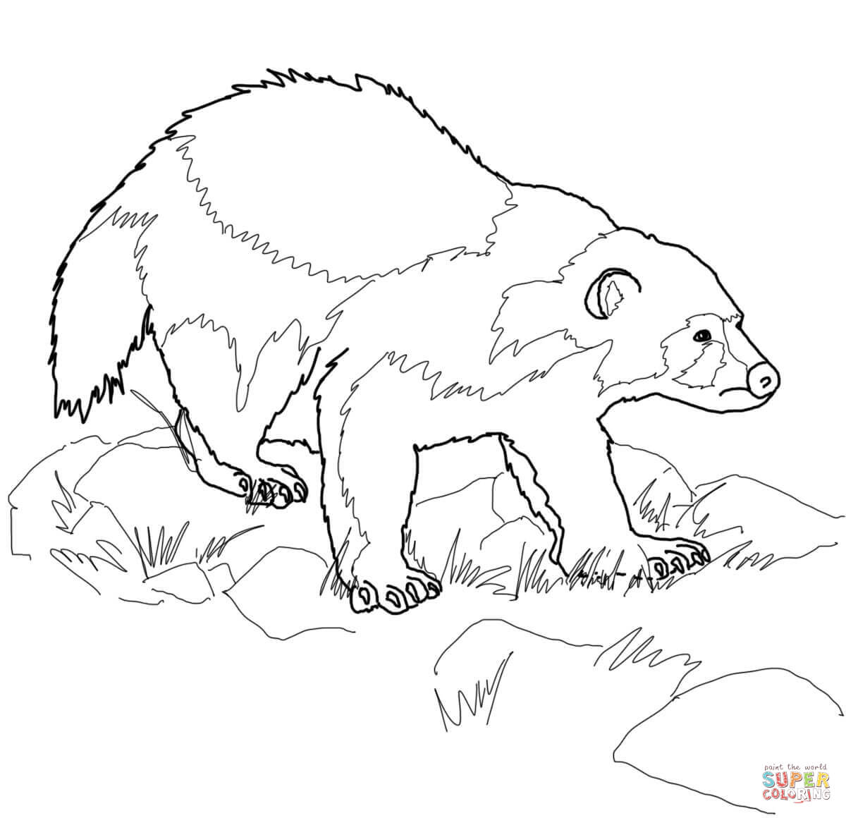 1200x1160 Wolverine Animal Coloring Page Free Printable Pages
