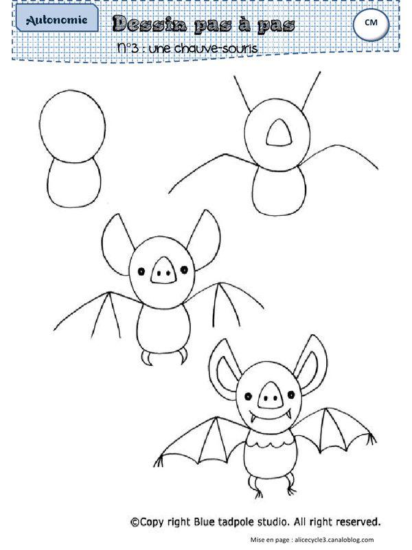 Animal Drawing Pdf