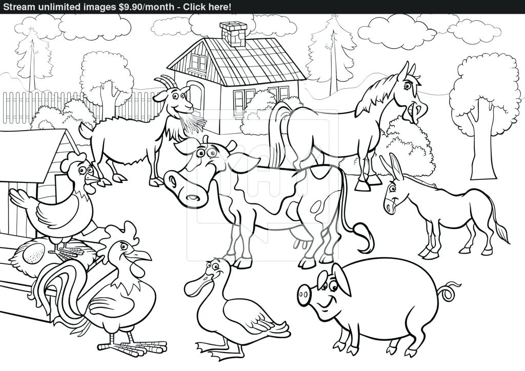 Animal Drawing Pdf At Getdrawings Free For Personal Use Animal