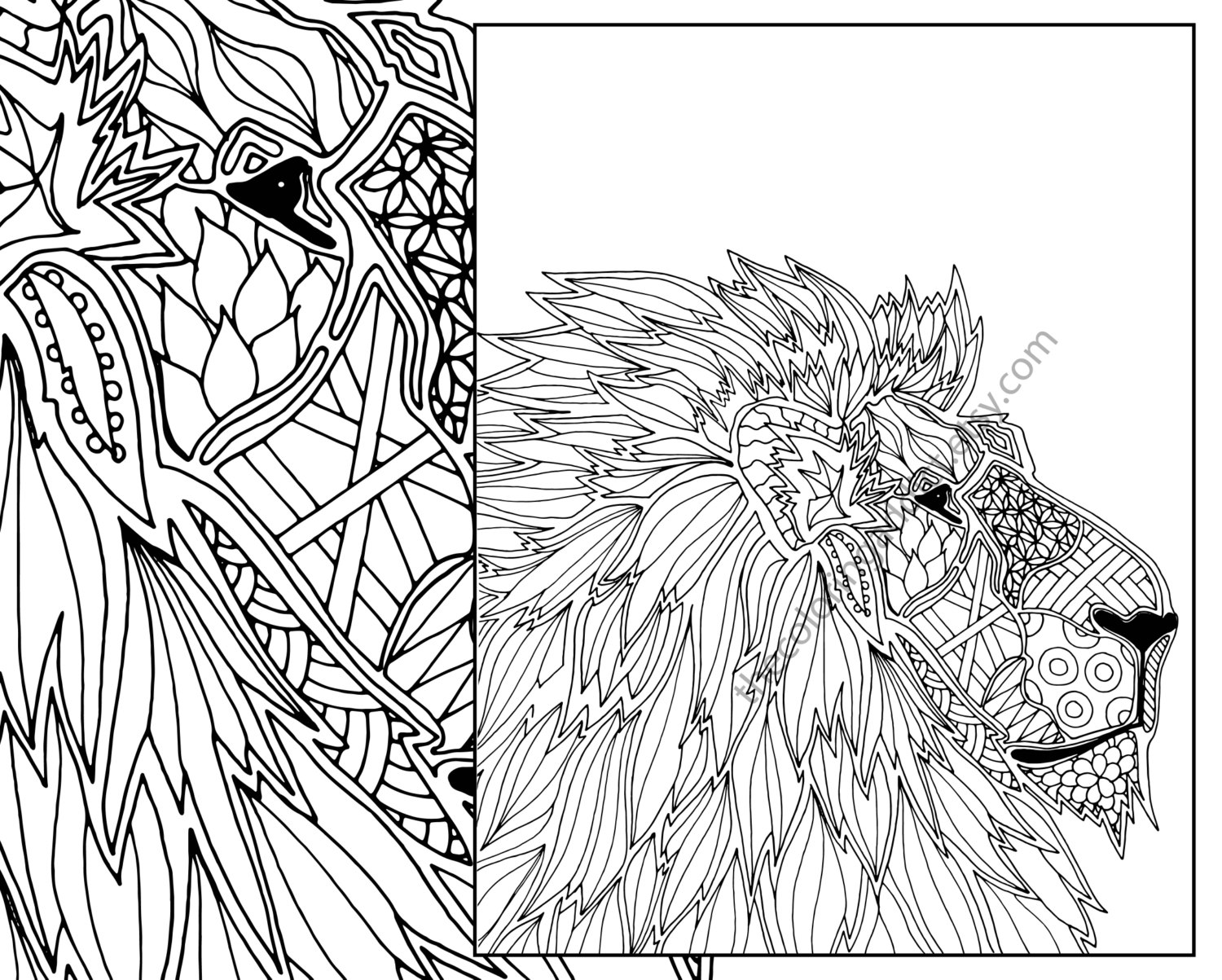 1500x1203 Animal Coloring Page Adult Digital Lion