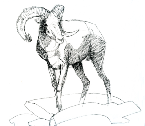 500x434 Ram Animal Drawing Hd Wallpapers On Astrology