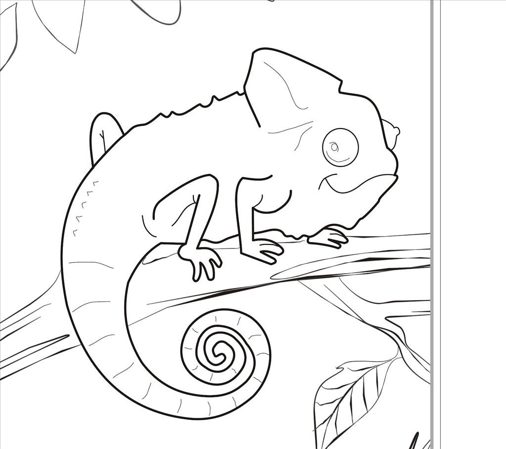 1023x909 Best Zoo Animal Coloring Pages Wallpapers Unknown Resolutions