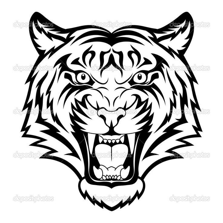 736x736 Drawn Animal White Tiger