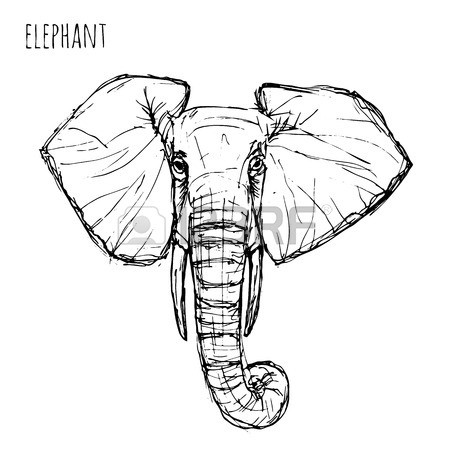 450x450 Wild Animal Black And White Elephant Face Drawn Pen And Ink