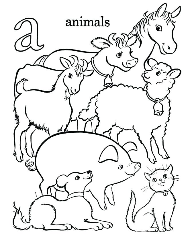Animal Farm Drawing at GetDrawings.com | Free for personal use ...