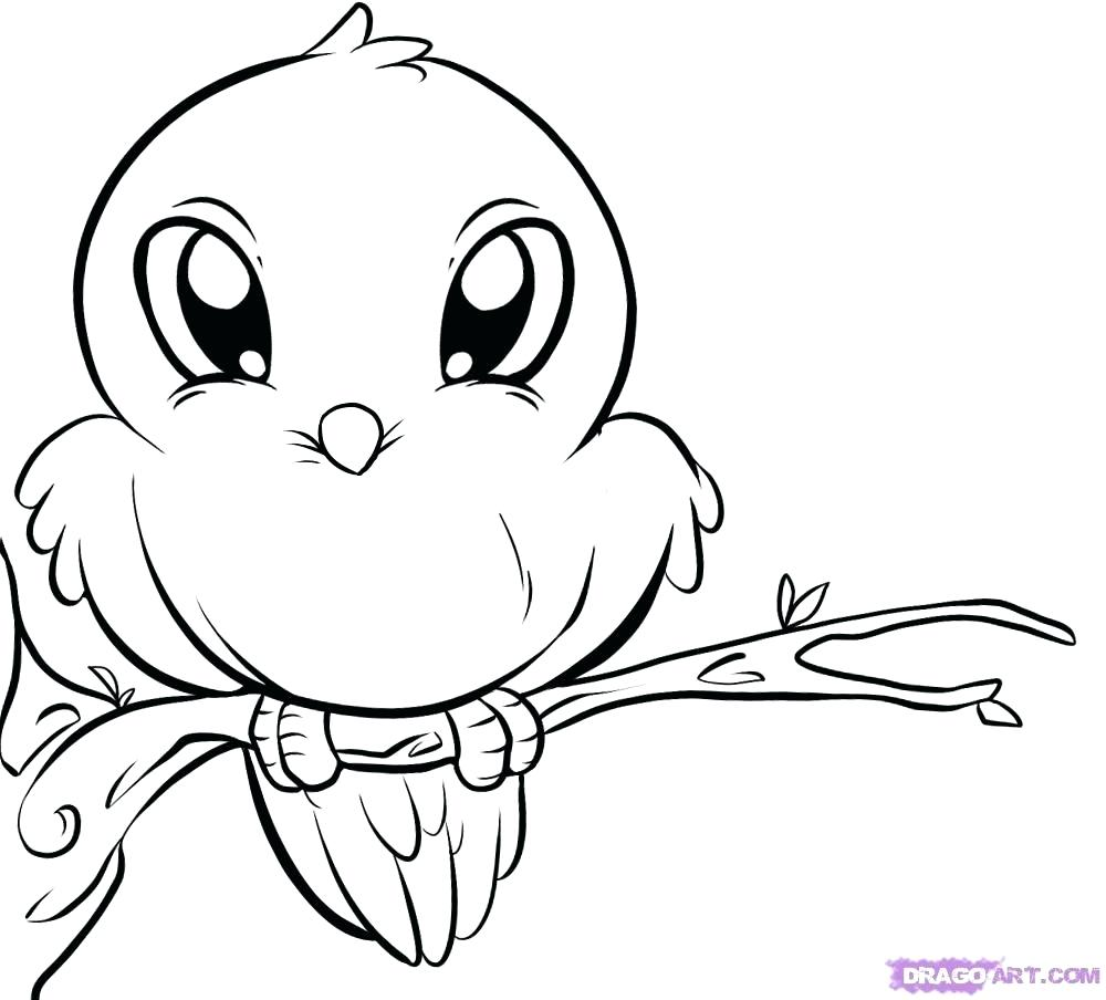 1000x904 Coloring Drawing For Coloring How To Draw A Bird Step By Birds
