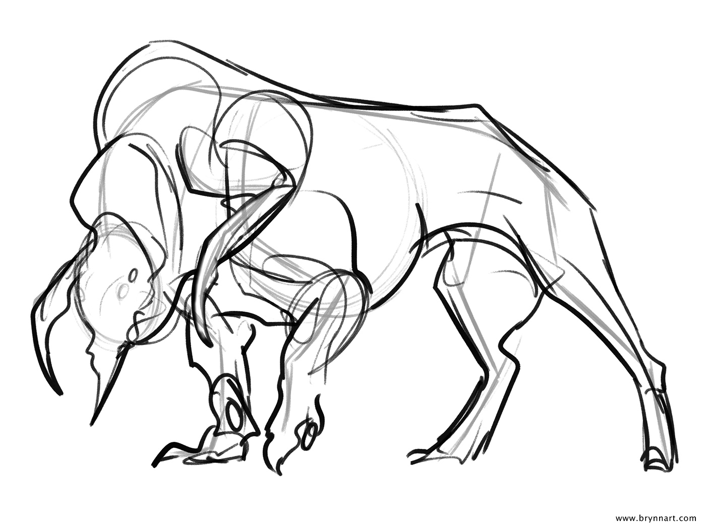 Animal Images Drawing